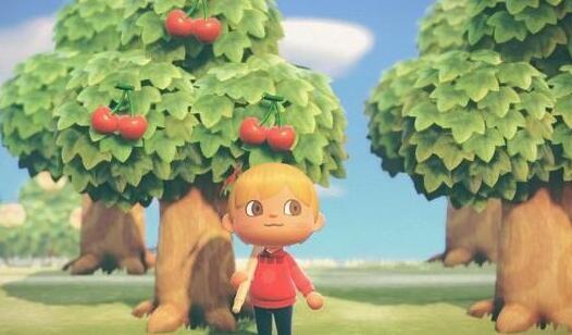 《集合啦动物森友会》全树木种植攻略