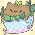 我的猫咪盆栽