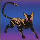 赛博朋克猫