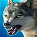 模拟狼王生存记